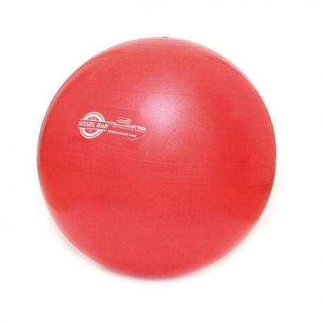 Ballon de Gymnastique ou Swiss Ball - Renforcement Musculaire - Exercices Pilates